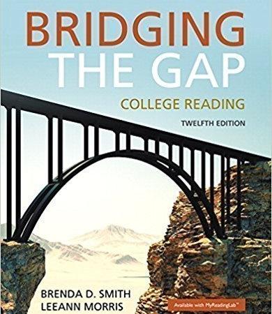 سفارش کتاب bridging the gap