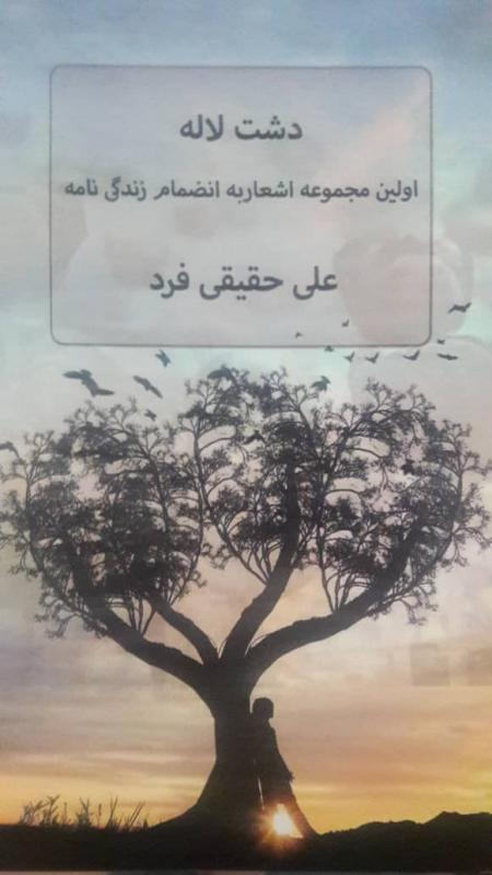 خرید کتاب دشت لاله علی حقیقی فرد (کرکی)
